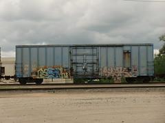 09-04-11 (28) (This Guy...) Tags: graf graff graffiti train car traincar rail road railroad rr box boxcar 2011 spell stalk tci