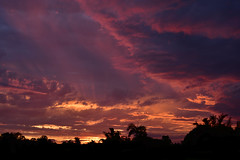 Summer Storms (Images by Jeff - from the sea) Tags: nikon d7200 dusk trees twilight clouds sunset sky storm sp2470mm summer fire tamron tamronsp2470mmf28divcusd 2016 2470mm september redsunset palmtrees pinksunset orangesunset bluesky bundaberg blackcloud 500v20f