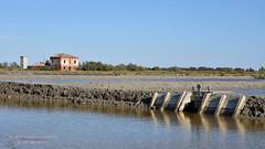 Recupero della Salina 6 (Nicola Armari) Tags: salina comaccio ferrara parco delta po