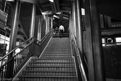 Life in Motion - Aiming high... (EHA73) Tags: summicronm1228asph leica leicamm typ246 streetphotography hongkong nightphotography bw monochrome night travel stairs walking steps blackandwhite