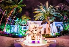 Miami colours (Adam Madrzyk) Tags: christmas longexposure sky colors beautiful beauty night mexico miami fisheye palmtrees lensflare nightsky tropicalchristmas beautifulsky canon60d miamicolors miamilongexposure adammadrzyk miamicolours