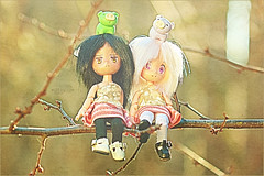 11/365 : sitting in a tree (GreenTea) Tags: tree treebranch treebranches branch branches sit sitting sittinginatree outside bokeh ef100mmf28macrousm pig pigs greenpig purplepig green purple eraser pigeraser iwako iwakoeraser iwakoerasers thistle clover grumpy happy obitsu animeobitsu 11cm 11cmobitsu twin twins catears paraboxchildhead doll dolls obitsudoll photoaday pictureaday project365 365toyproject oneobject365daysproject 3652013 365 365the2012edition adad2013 day11 project36511 project36501112013 01112013