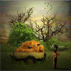 The hay wagon (jaci XIII) Tags: man field wagon farm straw campo trailer hay tas palha homem carroa peasant fazenda feno carreta campones