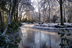 It's winter on reflection. (artanglerPD) Tags: winter sunlight lake ice reflections frozen aden snowaden