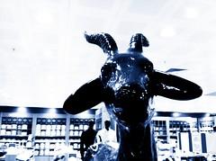 À toi de jouer, chèvre... (mathieugleizes) Tags: bw white black animal poule legend ff mathieu chevre gleizes totalité uploaded:by=flickrmobile flickriosapp:filter=nofilter