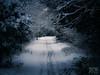 Morning Walk-996.jpg (JPW356) Tags: snow photographer miltonkeynes milton keynes 2013 miltonkeynesphotographer wwwjpwphotocouk jpwphoto jonpaulwright
