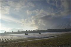 Wildermieming (zage59) Tags: winter clouds landscape austria tirol sterreich wolken landschaft tyrol wildermieming heustadel nikond800