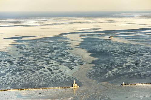 Icy Harbor
