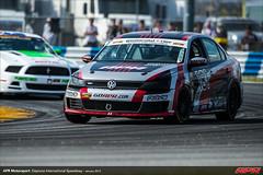 DIS-CTSCC-Race-2013142