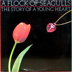 The Story of a Young Heart on Black (epiclectic) Tags: music black art rock vintage necklace heart album vinyl retro collection jacket cover tulip 1984 lp record sleeve onblack flockofseagulls epiclectic epilcectic