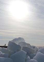 IMG_0692 (tinehendriks) Tags: friesland hindeloopen 2012 kruiendijs