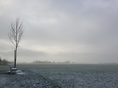 einsam im Nebel (shaza sha) Tags: winter snow nature outside killingtime ablenkung hometownlove