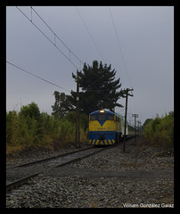 De vuelta! (Fepasas en la Araucania) Tags: santiago tren efe pasajeros 16000