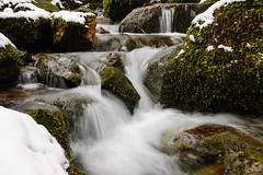 sprudelnder Bach (tankredschmitt) Tags: schnee winter flickr bach landschaft wald detmold silberbach