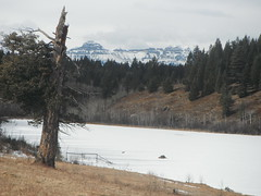 Bearspaw Lake -  Room with a View (Mr. Happy Face - Peace :)) Tags: county winter vacation sky cloud sun foothills lake snow canada ice nature weather rural fence reflections season drive landscapes pond peace pov meadows explore pasture alberta northamerica rockymountains touring 1a winterwonderland yyc firtree farmlife hff postcardphoto roadways naturesbeauty jimmyb 2013 exporing nationalparkway mrhappyface couuntryside frozenlandscapes fencefriday happyfencefriday loversoflandscapes photosforall photospourtous bearspawlake