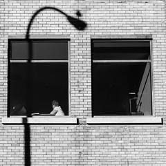 eavesdropping (bluechameleon) Tags: street city shadow people urban blackandwhite bw building brick bird square streetlight squarecrop newwestminster bluechameleon artlibre sharonwish bluechameleonphotography