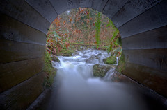 Wormhole (Alan Drake) Tags: wood longexposure canada nature water leaves digital landscape flow moss nikon exposure hole britishcolumbia c pipe wideangle foliage frame ndfilter d7000 tgam:photodesk=framing2013