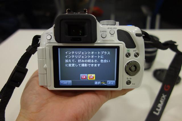 DSC05950