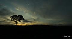 Novo dia (1057) (Jorge Belim) Tags: amanhecer nascente arrebol novodia canoneos50d