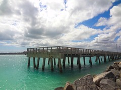 ocean wood blue vacation sky lake fish building bird art beach nature water rock clouds photography shark pier photo fishing fisherman rocks downtown waves florida miami wildlife seagull south cage tropical crate southbeach tropics