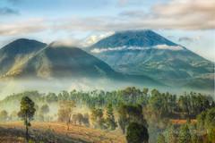 Valley in the mist , Volcán de Agua – Volcano of Water  , Guatemala (janusz l) Tags: morning mist water fog forest volcano bravo guatemala valley hdr rolling lakeatitlan volcán chimaltenango janusz leszczynski 004030 deagua 20130315