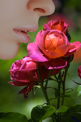 The Scent Of A Rose (swong95765) Tags: roses flowers plant bokeh woman female lips nose scent