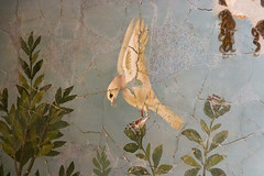 IMG_0094 (jaglazier) Tags: 1stcentury 1stcenturyad 2016 4thstyle 72316 animals birds campania copyright2016jamesaglazier crafts deciduoustrees fountains frescoes fruittrees goldfinchs grecoroman heads herms italy july landscape marble museoarcheologiconazionale museoarcheologiconazionaledinapoli naples napoli national nationalarchaeologicalmuseum nazionale painting plants pomepii religion rituals roman sparrows stonesculpture trees archaeology art figs floral flowers fresco gardens hopoee illusionism landscapes laurel magpies pigeons sculpture tromploeil wallpainting