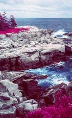Black Brook Cove infrared (Markus Jork) Tags: leica m3 summicron 50mm infrared colorir aerochrome slide film fpp