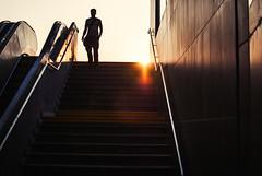 descent I (ewitsoe) Tags: descent stairs rondo ewitsoe nikon poznan d80 35mm construction ronodkaponiera man sunrise sunny warm summer heat warmth person street city cityscape life living new open morning