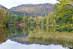 Loch Staredam (eric robb niven) Tags: ericrobbniven scotland autumn loch staredam landscape trees waterscape