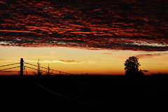 The sunset on Mars (elizabeth_raccoon) Tags: nature outdoor night red russia sunset