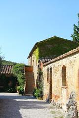 Edera sulle pareti (Daphne135) Tags: toscana valdorcia tuscany italy italia edera fiori pietre vicolo sole estate settembre september