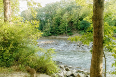 The Cuyahoga (Denise @ New Mercies I See) Tags: 2016 september summer waterscape river water outdoors nature humid onethousandgifts peninsula summitcounty lock29 cuyahogavalleynationalpark cvnp