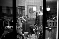 Headless through the night (Leica M6) (stefankamert) Tags: stefankamert street bw sw baw noir noiretblanc monochrome mono horse store window blackandwhite blackwhite schwarzweis headless leica m6 m rangefinder ilford fp4 voigtlnder nokton primelens film analog grain lights leicam6