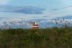 _JAM7767 (Jamil D750) Tags: miami beach south pointe park water blue skies green grass skyscrapers pier lifeguard house evening field nikon d750