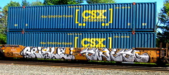 grisle - twito (timetomakethepasta) Tags: grisle twit twito freight train graffiti art intermodal csx fcr upsk ehc kym high krime
