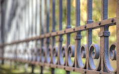 Classica (tullio dainese) Tags: allaperto outdoor ringhiera railing autunno autumn