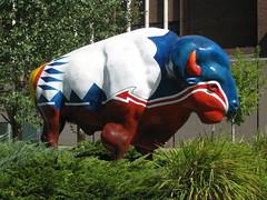Great Falls, Montana (Forest Edge) Tags: buffalo paintedbuffalo greatfallsbuffalo