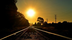 Tracks of gold (phunnyfotos) Tags: railroad sunset summer sun west lines yellow gold golden nikon traintracks tracks railway australia victoria moe vic sunbeams railroadtracks gippsland westward railwaytracks trainlines lateafternoonlight railwaylines d5100 nikond5100 phunnyfotos