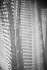21 (Enzaa ...) Tags: blackandwhite bw 35mm canon eos prime photo shadows dof bokeh mark iii 5d windowlight project365 canonef35mmf14lusm bokehlicious canoneos5dmarkiii shuttersisters365
