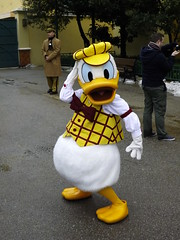 Donald! (CoasterMadMatt) Tags: park winter paris france season french photography duck  foto photographie photos euro disneyland hiver january disney donald resort photographs theme studios walt janvier parc donaldduck franais park saison parc thme 2013 studios walt theme paris euro disney disneyland coastermadmatt thme