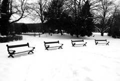Sitting on four park benches [Explored] (zawtowers) Tags: park winter england white snow black public monochrome gardens bench four mono buxton district space derbyshire january peak row line together covered pavilion