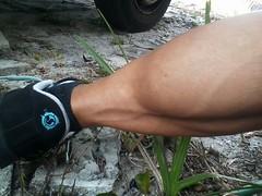 More of Sara (danks11) Tags: sexy muscular veins calves veiny