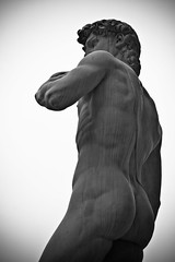 David (Reproduction) (notanyron) Tags: italy sculpture david art statue florence tuscany michelangelo piazzadellasignoria