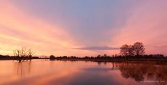 Sunrise (Kees Waterlander) Tags: other thenetherlands natuur filters drenthe zonsopkomst natuurgebieden bargerveen natuurverschijnselen zwartemeer leeproglassneutraldensityfilter06nd leehardgradneutraldensity06nd