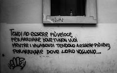 it takes a fool to remain sain (DanMasa) Tags: graffiti tag bologna murales vagabondo aforisma