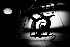 IMG_3870 (A Bernstein) Tags: toronto circus cirque aerials
