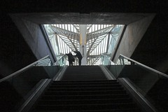 The right way (Paulo N. Silva) Tags: portugal station train lisbon steps oriente