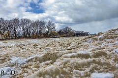 Winter on Evanston's Beach - Illinois (RickDrew) Tags: winter snow cold ice canon landscape frozen illinois sand alien freezing il icy evanston slippery wintery 2013 canon5dmkiii