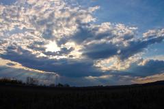 The sun is about to set on Moissac (Curufinwe - David B.) Tags: sunset sky cloud sun france field clouds soleil sony champs ciel fields nuage nuages champ tarnetgaronne moissac midipyrnes 1650 a55 sonyalpha55 a55v sonydslta55v sony165028ssm